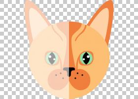 小猫卡通,鼻子,脸,动画片,耳朵,线路,头,微笑,桔黄色的,尾巴,鼻部