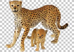 猫卡通,胡须,鼻部,动物形象,野生动物,剑齿虎,剑齿猫,动物雕像,动
