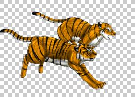 老虎卡通,动物形象,尾巴,野生动物,步行自行车,正在运行,雪豹,绘
