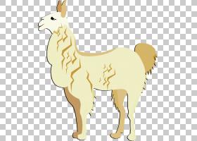 骆驼卡通,尾巴,动物形象,野生动物,骆驼般的哺乳动物,牲畜,文档,