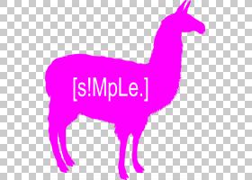骆驼卡通,骆驼般的哺乳动物,野生动物,线路,动物形象,尾巴,紫色,