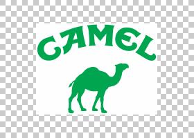 绿草背景,动物形象,树,线路,面积,徽标,草,骆驼般的哺乳动物,文本