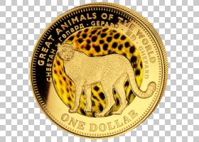 金币,金属,硬币,猫,黄金,猎豹,