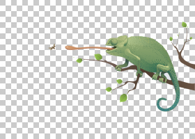 绿草背景,草,绿色,昆虫,叶,爬行动物,剪影,动画片,动物,绘图,普通