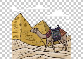 火车卡通,阿拉伯骆驼,骆驼般的哺乳动物,牲畜,埃及,骆驼,法老,骆