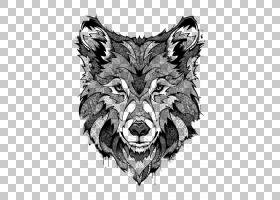 狼画,公猪,T恤,野生动物,头,绘画,线条艺术,纹身艺术,黑狼,巴黎,