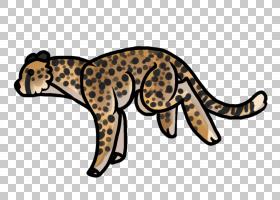 卡通猫,动物形象,尾巴,野生动物,动物,彪马,猫,爬行动物,猎豹,豹