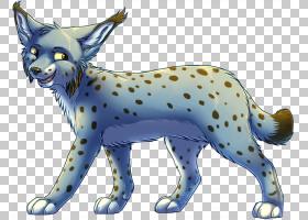 猫卡通,动物形象,野猫,动画片,动物,彪马,尾巴,野生动物,爪子,猫,