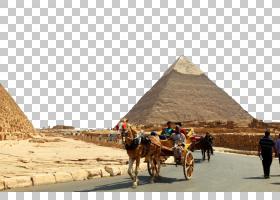 旅游游客,生态区,纪念碑,景观,阿拉伯骆驼,骆驼般的哺乳动物,旅行