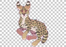 猫卡通,尾巴,野生动物,动物,彪马,动画片,猫,豹子,猎豹,