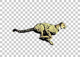 猫卡通,彪马,动物形象,尾巴,野生动物,爬行动物,黄色,动画片,猫,
