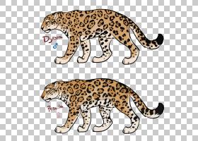 猫卡通,彪马,野猫,动物形象,尾巴,野生动物,鼻部,动物,猫,雪豹,胡