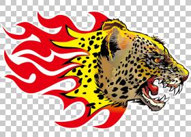 火焰卡通,老虎,野生动物,咆哮,捷豹,头,鼻部,衣物熨斗,热压机,火
