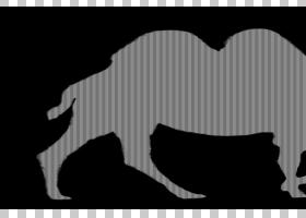动物卡通,线条艺术,景观,野生动物,黑白相间,牲畜,阿拉伯骆驼,骆