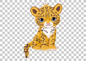 CAT绘图,章鱼,动物形象,胡须,老虎,猎豹,豹子,黑豹,绘图,黑豹,捷