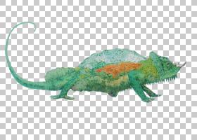 变色龙背景,变色龙,爬行动物,变色龙油图案,创造性工作,水墨画,动