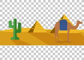埃及金字塔角度,线路,黄色,能量,面积,角度,埃及,艺术品,埃吉普托