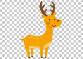 公园卡通,动物形象,尾巴,野生动物,奈良,梅花鹿,鹿角,有事件的有