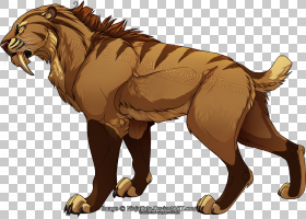 狗和猫,咆哮,野生动物,绘图,猎豹,剑齿虎,剑齿猫,剑齿,狮子,老虎,