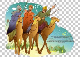 背景海报,骆驼般的哺乳动物,海报,牲畜,免费赠送,动画片,沙漠,绘