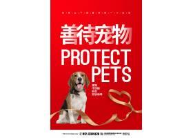 创意红色简约疫情防控善待宠物倡议宣传公益海报设计