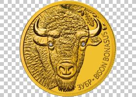 金币,货币,金属,钱,钱币收藏,欧元硬币,货币学,银牌,钞票,俄罗斯