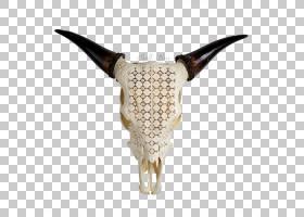 骷髅卡通,机翼,野牛,雕刻,动物,骨架,下颚,骨头,人体骨骼,骨雕,美