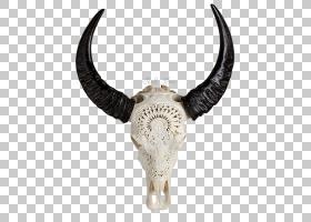骷髅卡通,水牛,野牛,木雕,木材,非洲水牛,公牛,布巴利纳,美国野牛