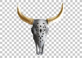 骷髅卡通,骨头,牛只,铜绿,牧场,瓦内洛,墙,头骨,公牛,小型牛,喇叭