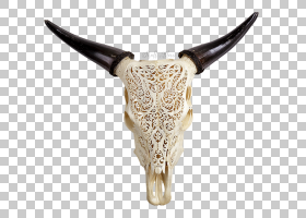 骷髅卡通,骨头,牛只,雕刻,皮革,头,麋鹿,野牛,人的头骨,动物,公牛