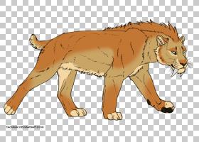 画狮子,动物形象,线条艺术,尾巴,彪马,野生动物,冰河时代,动物,牙