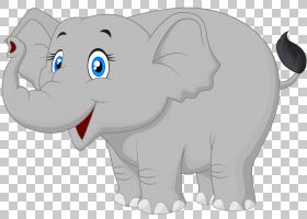 猫狗卡通,动物形象,尾巴,野生动物,鼻部,非洲象,印度象,动画片,大
