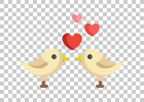 爱情背景心,鸭子、鹅和天鹅,机翼,鸡肉,喙,鸟,水鸟,心,网页设计,