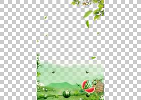 西瓜PNG免抠素材 (140)图片