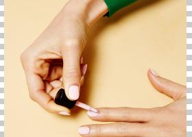 指甲手模型,皮肤,手指,手,手模型,理念,弗兰斯克・内格尔,足疗,Na图片