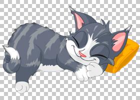 CAT绘图,胡须,尾巴,鼻部,猫,小猫咪,咕噜声,睡觉吧,幽默,绘图,动