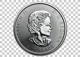 考拉卡通,货币,头,美元硬币,个人退休帐户,白金币,薄荷,白金考拉,