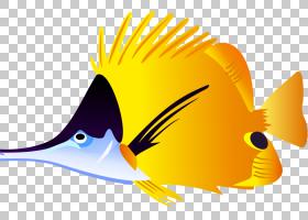 小鸟卡通,鸟儿,机翼,喙,尾巴,海鲜,黄色,热带鱼,动画片,绘图,鱼,