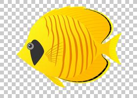 鱼卡通,喙,橙色,黄色,纸张压花,涂有油漆的金属,丝鳍蝴蝶鱼,动物,
