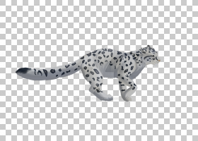 猫卡通,尾巴,动物形象,动物,野生动物,小雕像,彪马,雪豹,捷豹,豹