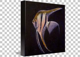 现代背景,海岸,Canvas On Demand LLC,墙,神仙鱼,静物,现代艺术,