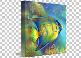 珊瑚礁背景,丙烯酸涂料,尾巴,现代艺术,水下,淡水水族馆,刺棘科(P