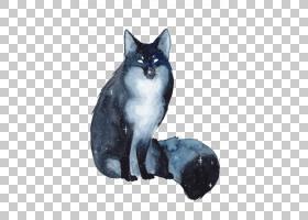 星图,黑猫,小雕像,中小型猫科动物,猫,星星,水墨画,银河系,动物,