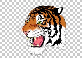 猫卡通,鼻部,狮子,胡须,头,咆哮,野生动物,脸,BMP文件格式,Librsv