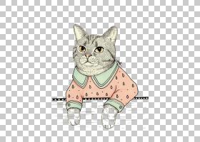 小猫卡通,尾巴,爪子,小猫咪,动画片,绘画,猫咪女士,绘图,猫,胡须,