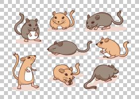 猫卡通,动物形象,尾巴,野生动物,室上春树,鼻子,绘图,沙漠老鼠,动