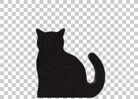 猫咪剪影,黑色,剪影,宠物,爪子,猫咖啡馆,动物救援队,猫为什么要