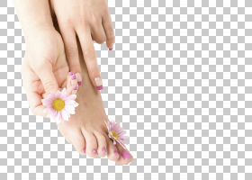 指甲皮,花瓣,拇指,指甲护理,手指,手,手模型,愈伤组织,皮肤,脚,美图片