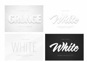 黑白简洁主题字体设计