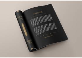 高檔大氣簡約風雜志樣機書籍設計模板